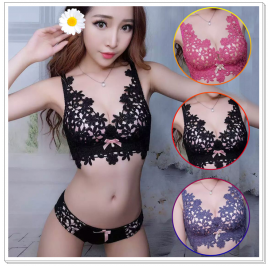 Embroidery Wireless Lace Bra Set (BRA EMB)